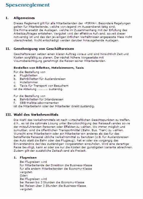 Spesenreglement Muster zum Download