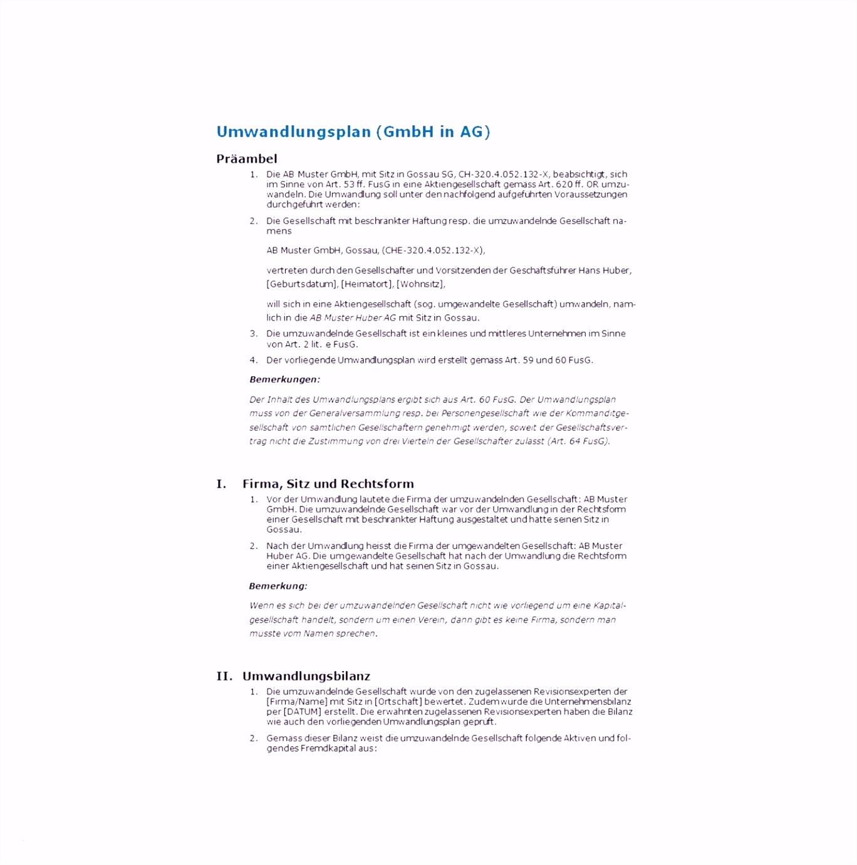 Haftungsausschluss Vorlage Pdf 8 Bilanz Vorlage Pdf Xaochy C2zd76bpj3 Emcw6snd24