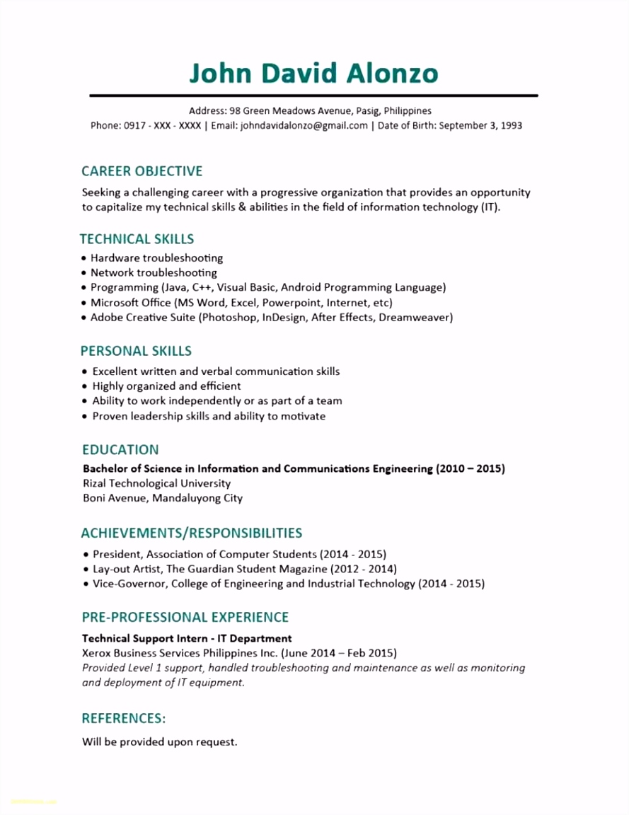 29 Professional Cv Template New