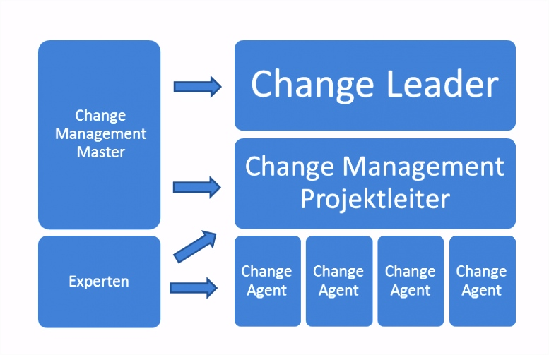 Change management Rollen Lean Six Sigma Pinterest