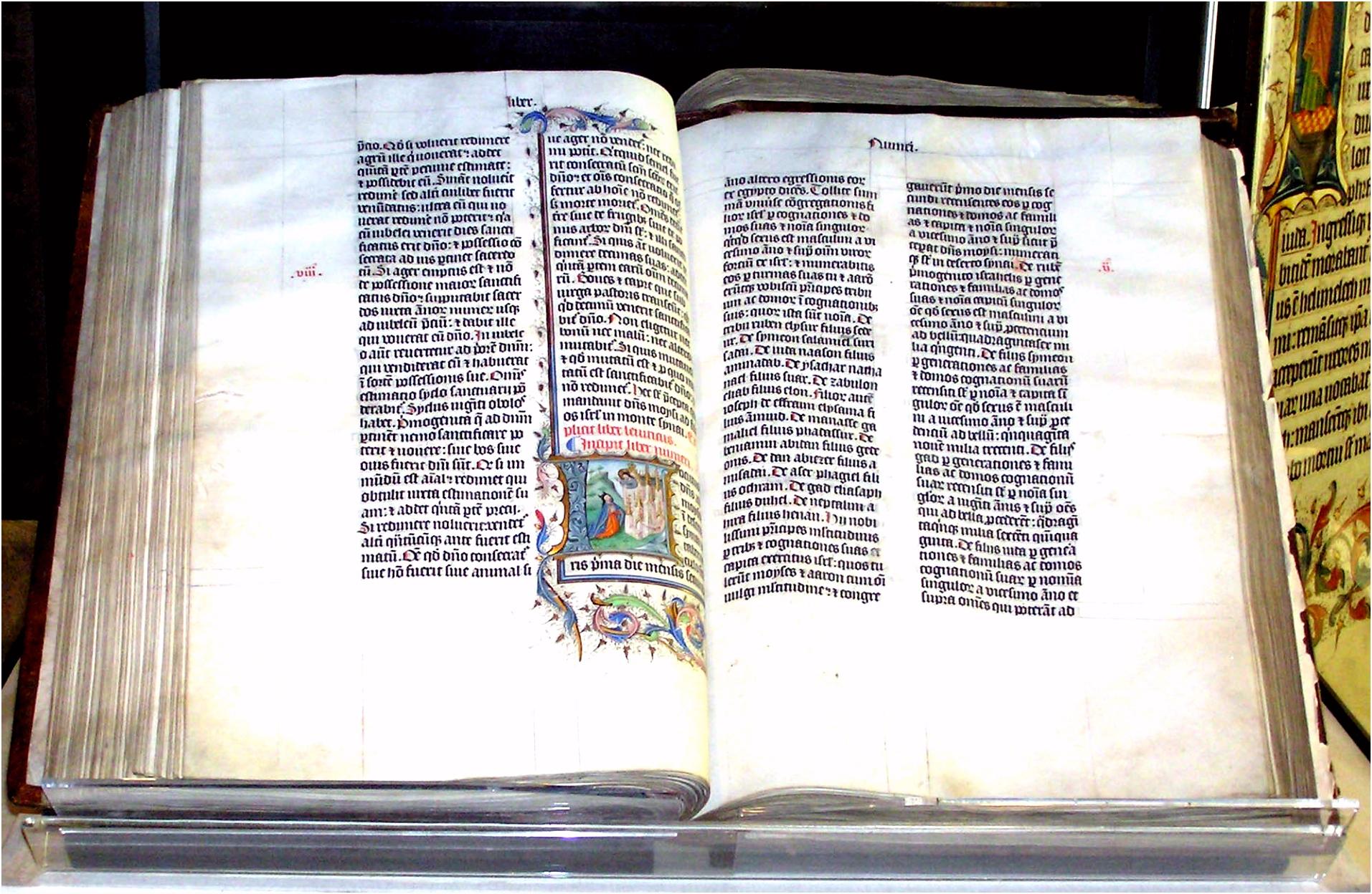 The Bible and homo uality