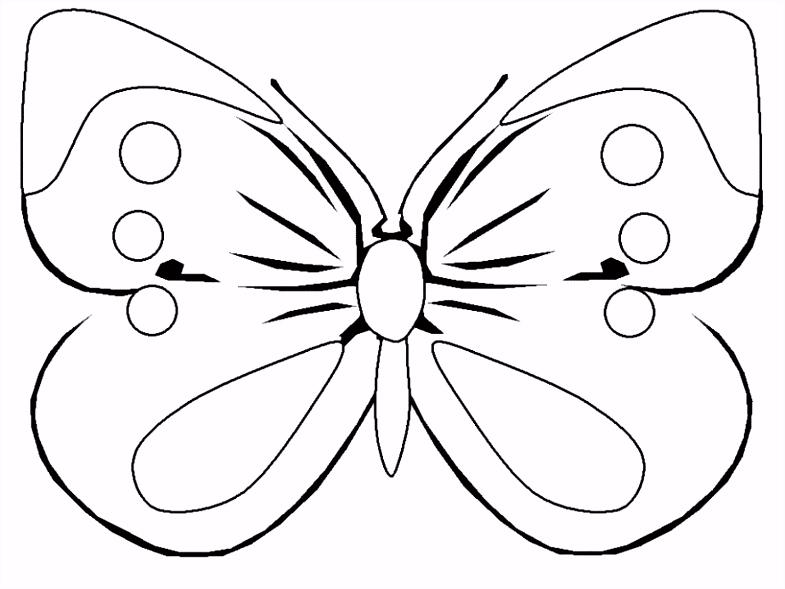 Schmetterling Bugelperlen Vorlage Schmetterling Vorlage Zum Ausdrucken Pin Von Disha Disha Auf Z4os55unh4 A6ij22uaou