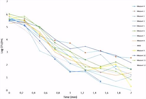 Heat resistance of Cronobacter sakazakii DPC 6529 and its behavior