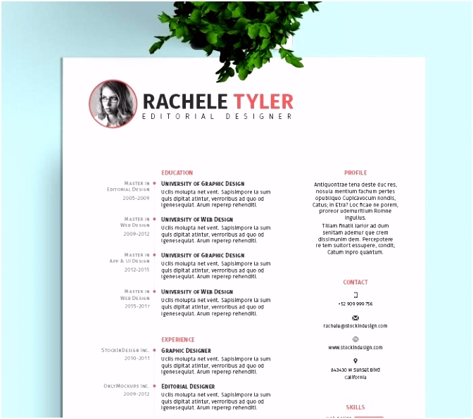 Resume Indesign Resumes Planner Daily Layout Best Indesign Flyer