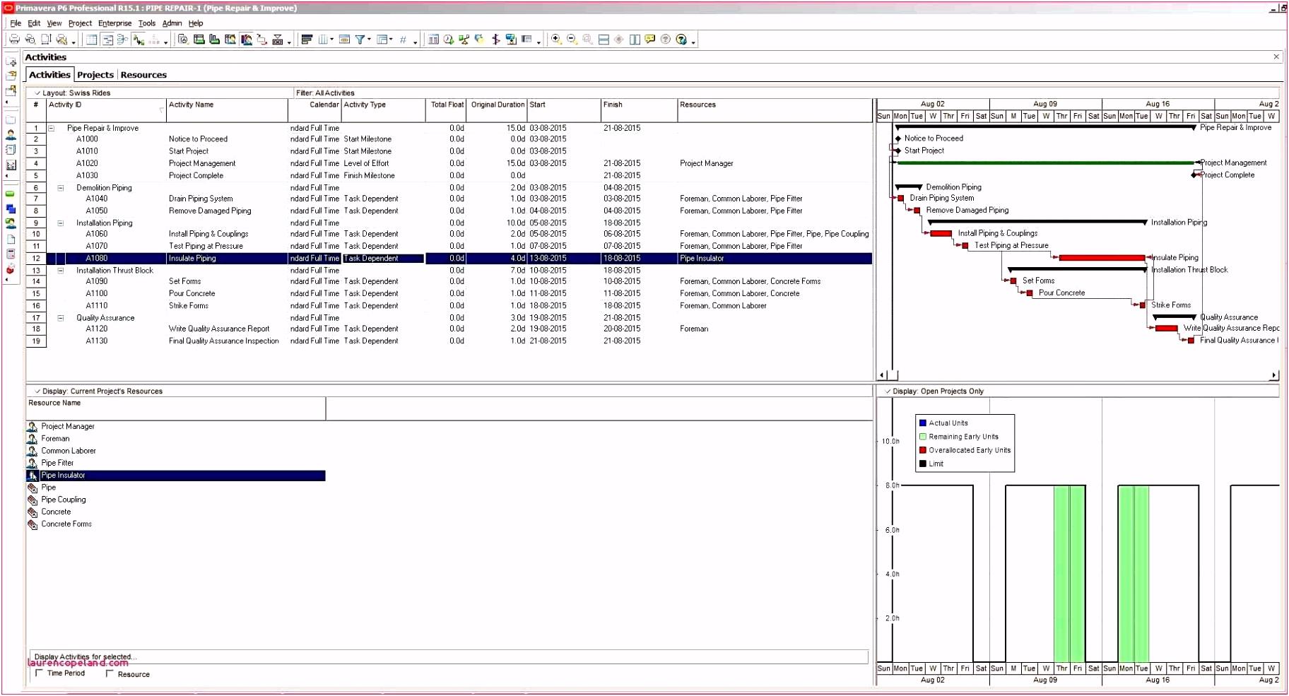 Projektplan Excel Glamourös Ablaufplan Projektmanagement Vorlage