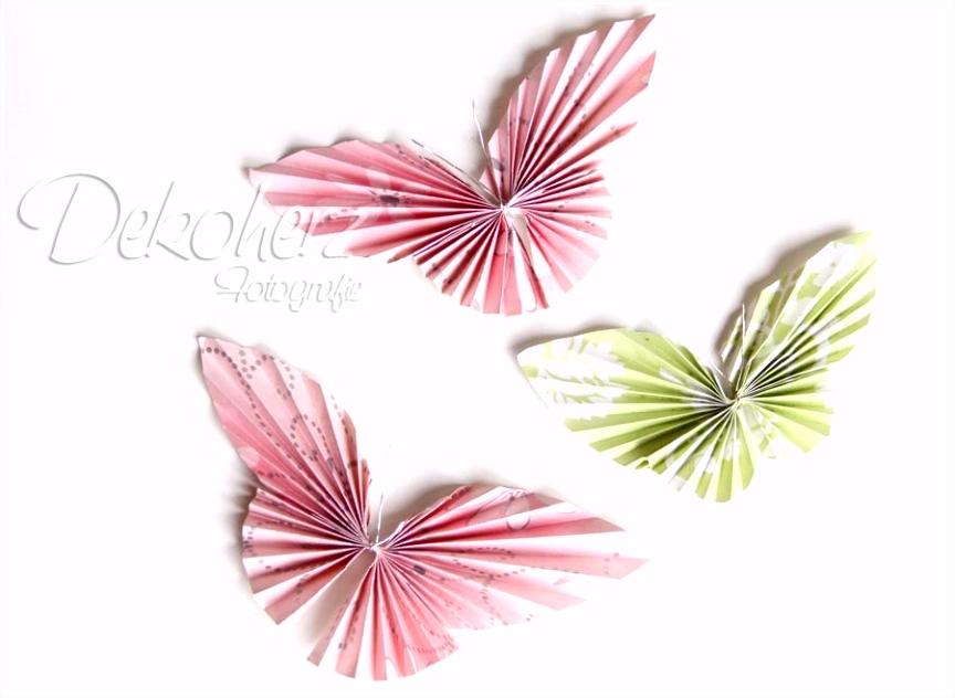 Schmetterling Papier Free Color Pages 3d Schmetterlinge Basteln