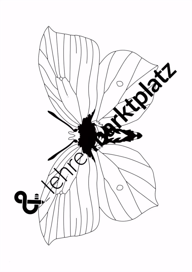 Schmetterling Auf Blume Ausmalbilder Vorstellung Schmetterlinge