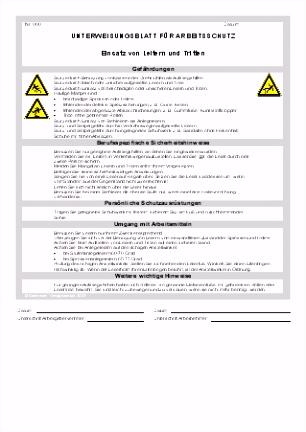 Unterweisung Einsatz von Leiter und Tritten Sofort Download