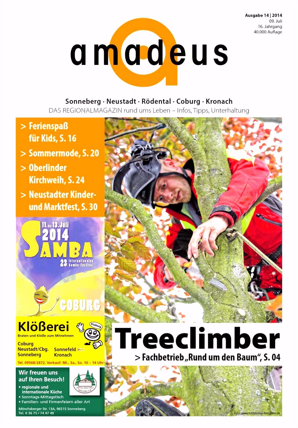 amadeus 14 2014 by amadeus Verlag issuu