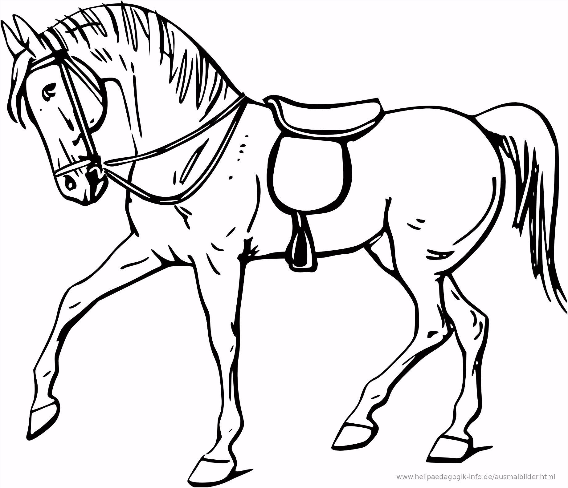 Ausmalbilder Pferde in Malvorlage Pferdekopf CarsMalvorlage Store