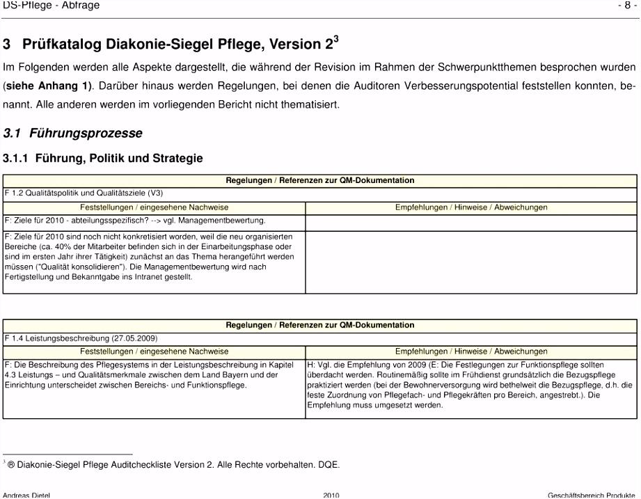 Interne Revision in Medizin und Pflege vom PDF